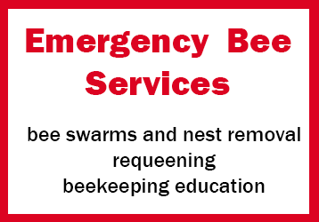 Emergency bee Services